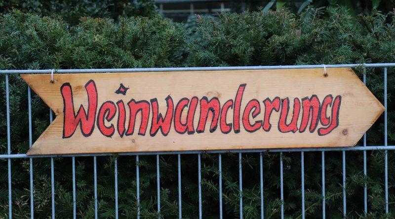 Schild Rotweinwanderung Schriesheim 2018