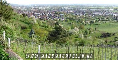 Mointainbiken zwischen Schriesheim Strahlenburg und Dossenheim Schauenburg 1 (2)