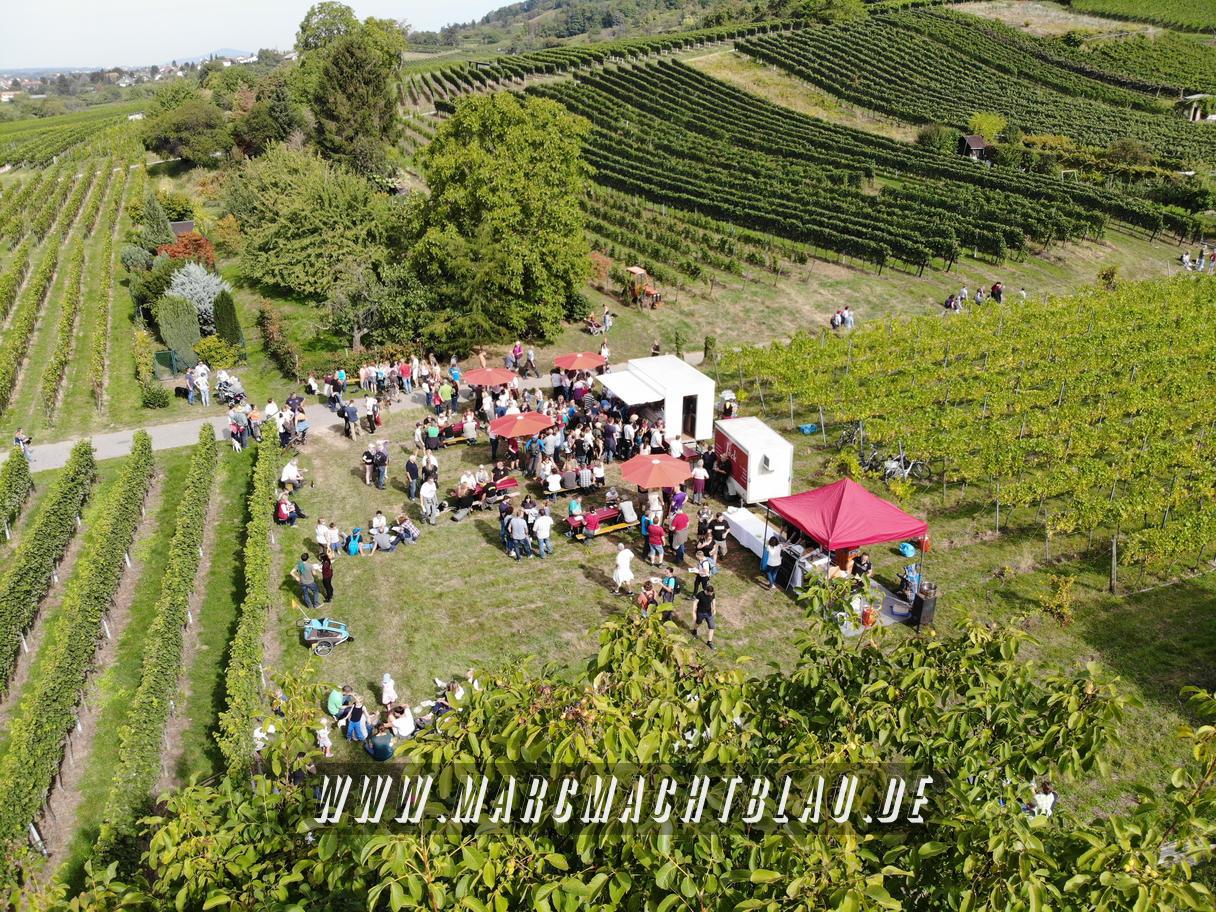 Weinwanderung Schriesheim 2019 (Nr. 23) - Bilder und