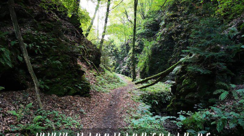 Weg im Tal
